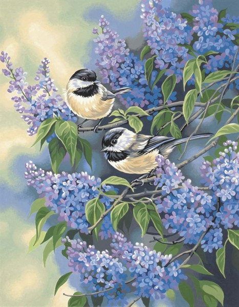 Chickadees and Lilacs - Meisen im Flieder
